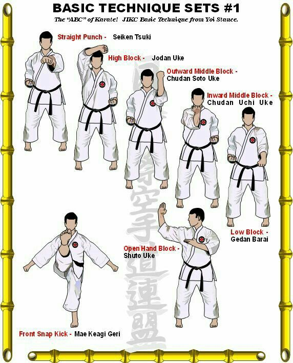 Goju ryu karate techniques