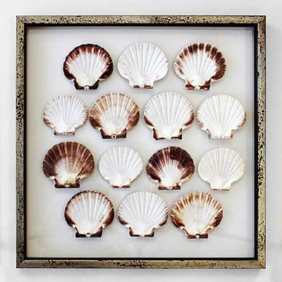 This one-of-a-kind artwork is made by double framing a dozen scallop shells between two sheets of glass. | Coastalliving.com
