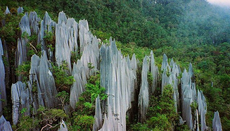 Important both for its high biodiversity and for its karst features, Gunung Mulu National Park, on the island of Borneo in the State of Sarawak, is the most studied tropical karst area in the world.