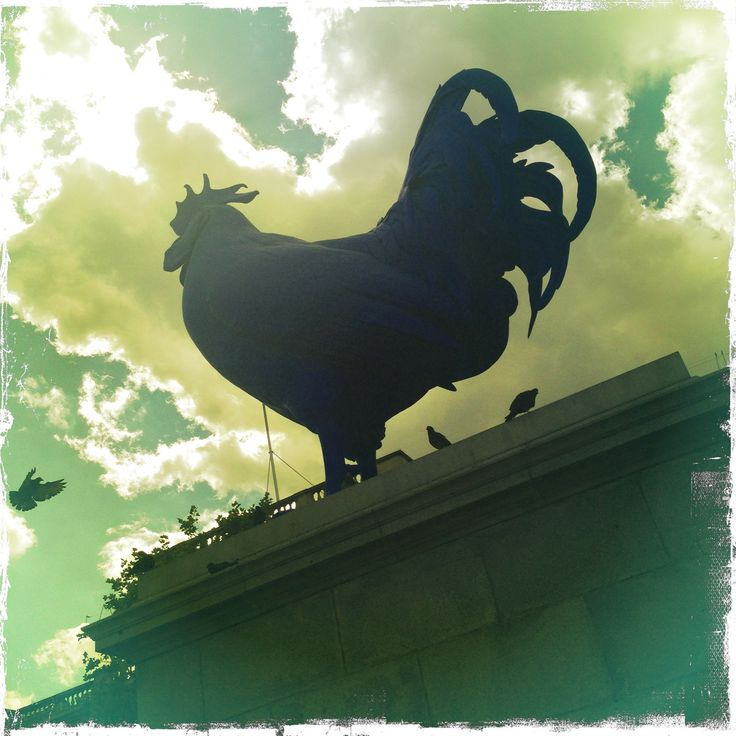 Big blue cock erected on fourth plinth in London's Trafalgar Square