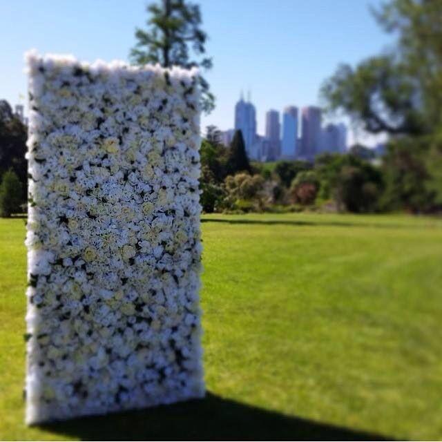We love this photo #whiteluxe #flowerwall #melbourne