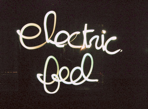 ooh girlll shock me like an electric eel.: Music, Gift Bags, Electric Feelings, Life, Mgmt, Quotes, Diy Gift, Art, Electric Eel