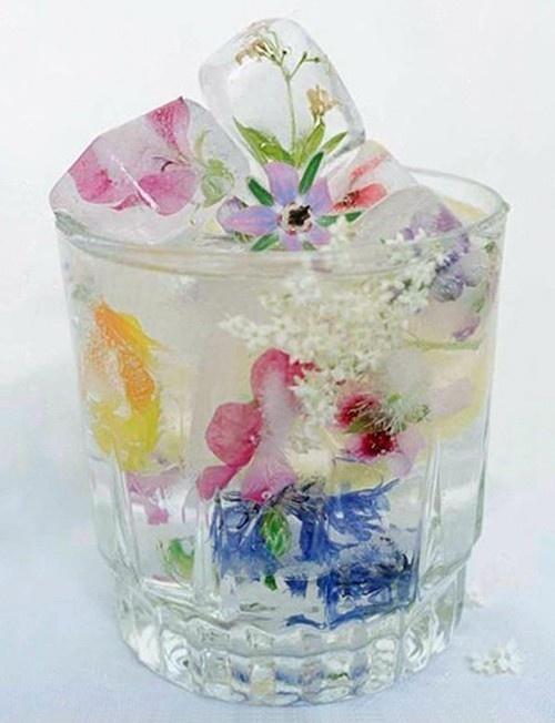 Edible flower ice cubes - looks amazing!