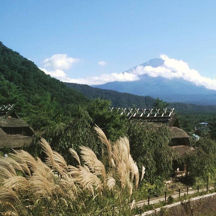 40 km in bici tra le montagne per  essere qui ad ammirare questo mondo meraviglioso! Il sacro monte #fuji finalmente si mostra  #Giappone #Japan #travel #viaggio #amazing #YouTube #vlog #travelblogger #travelvlogger #photooftheday #photography #japantrip #turismo #sugoi #onlyinjapan #bike #montagna #mountfuji #mountains #natgeotravel #nature #photo #lifeisbeautiful