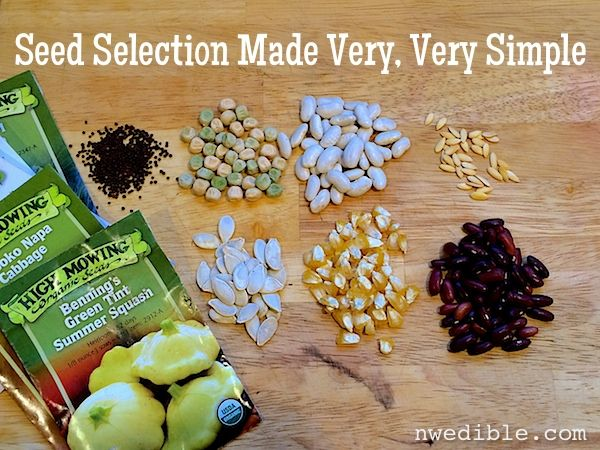 Seed Selection Made Very, Very Simple at NW Edible: Gardens Ideas, Gardens Flor, Gardens Conditioning, Edible Gardens, Gardens Landscape, Seeds Selection, Edible Life, Gardens Stuff, Gardens Pacific Northwest