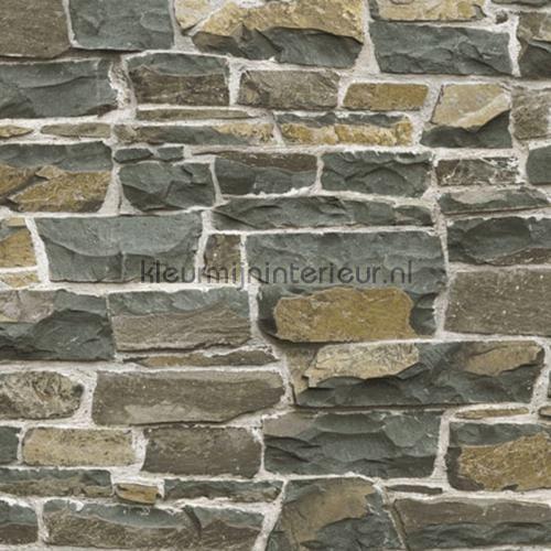 Stone wall bruin behang 138522 uit de collectie Brooklyn Bridge van Esta home online bestellen bij kleurmijninterieur