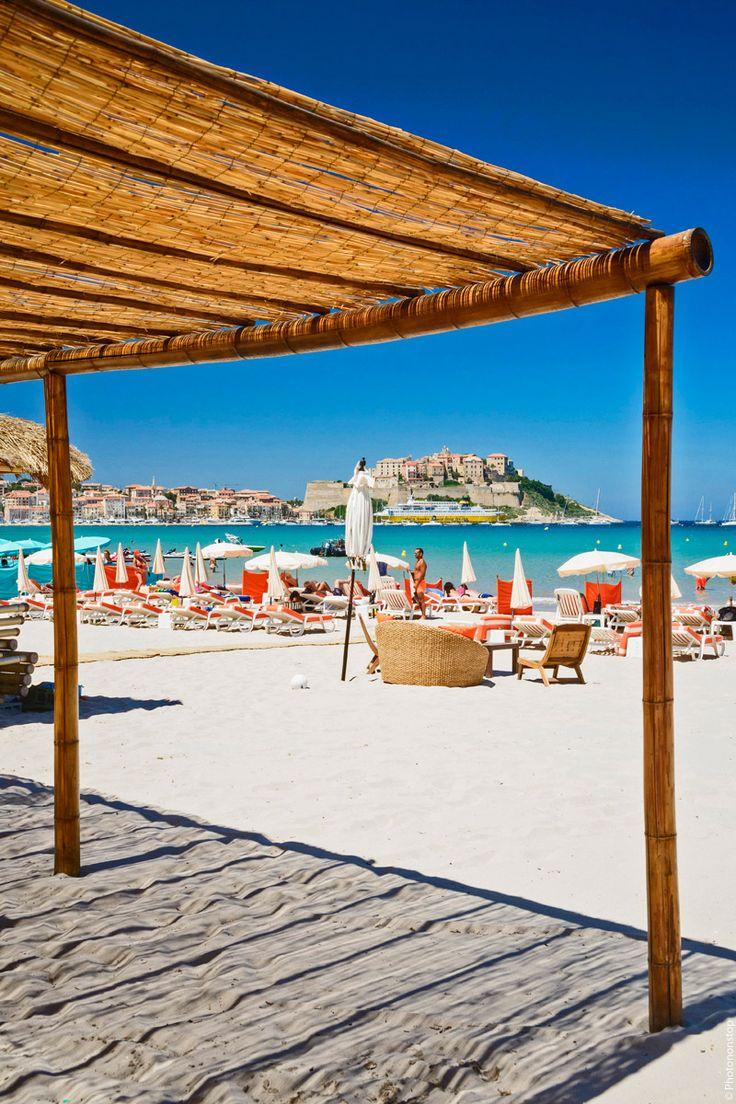 Découvrez les plages paradisiaques de Calvi, petit trésor du Nord de la Corse.