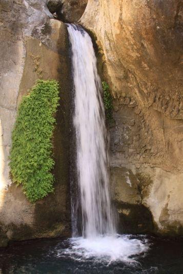Каньон Сападере располагается в 40 км от Аланьи. Рядом с каньоном разместилась и одноименная деревушка, в которой каждого туриста накормят местными экзотическими блюдами, ознакомят с жизнью деревни и бытом. А каньон, который образовался благодаря протекающей в нем реке, поразит глаз своей красотой и всевозможными оттенками зеленого. Каньон Сападере. Турция