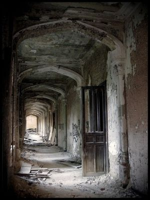 1000 images about abandoned on pinterest mansions old for Floor zegwaard
