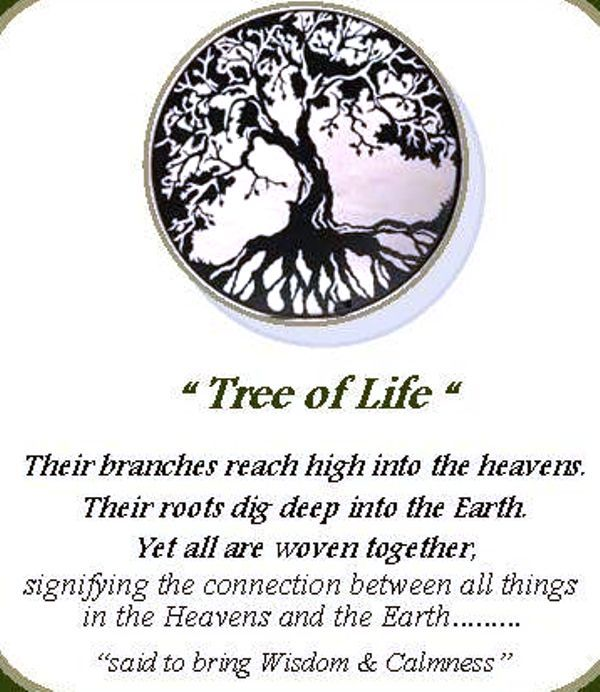 Meaning Of Christmas Tree Symbol: Tree Of Life Meaning, Tree Of Life Quotes