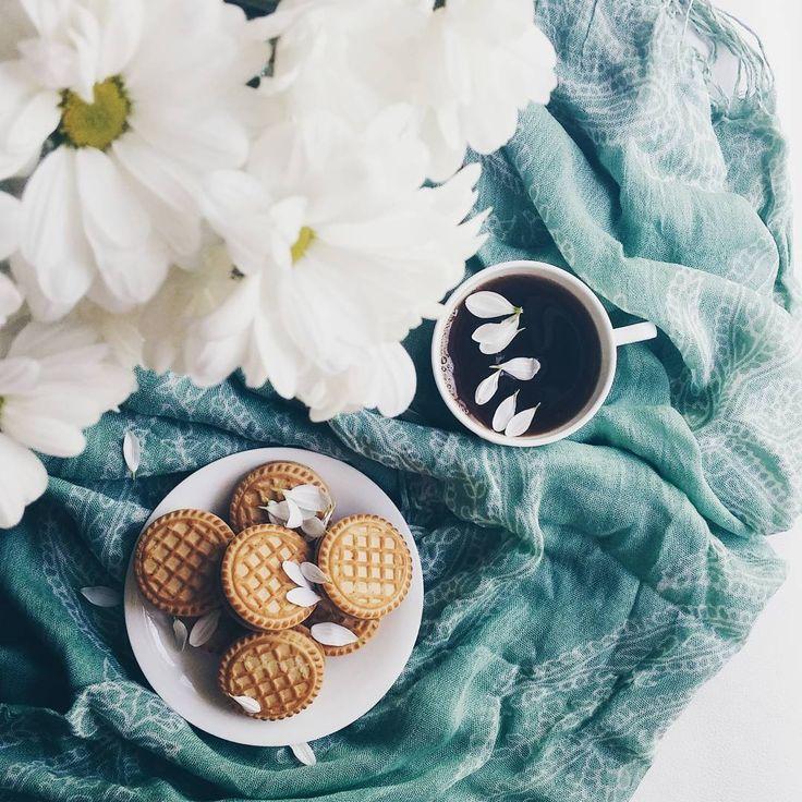 Good morning, my beautiful friends доброе утро, друзья ☕#morning #sweethome #vscomorning #instamorning #coffee #coffeetime #teatime #breakfast #vsco_allshots #vscoukraine #vscoturkey #bestoftheday #bestofvsco #happymoments #love #instamood #instadaily #vscodailydose #vscopicture #gunaydın #kahvaltı #flower #flowerslovers #vscoflowers #vscofilters #instabeauty #friday #hellofriday #tenderness