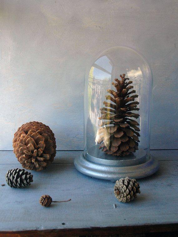 pine cones. glass domes.