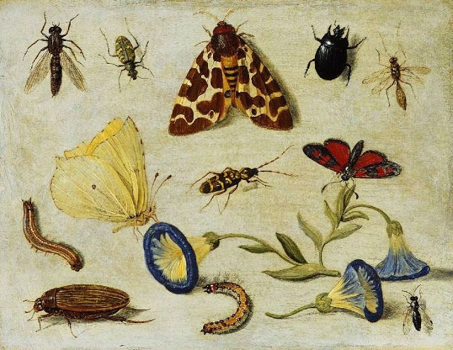 It's About Time: Intriguing still lifes by Jan van Kessel (Flemish painter, 1626-1679)