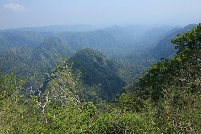 """Traversing El Imposible National Park - """"is a major biosphere reserve in El Salvador, Covering a large tract of pristine forest. Named after the treacherous gorge that bisects the park, legend has it that farmers transporting coffee to the southern ports had to blindfold their mules to get them across the steep slopes"""" http://wildernesshikes.blogspot.com/2012/05/traversing-el-imposible.html"""
