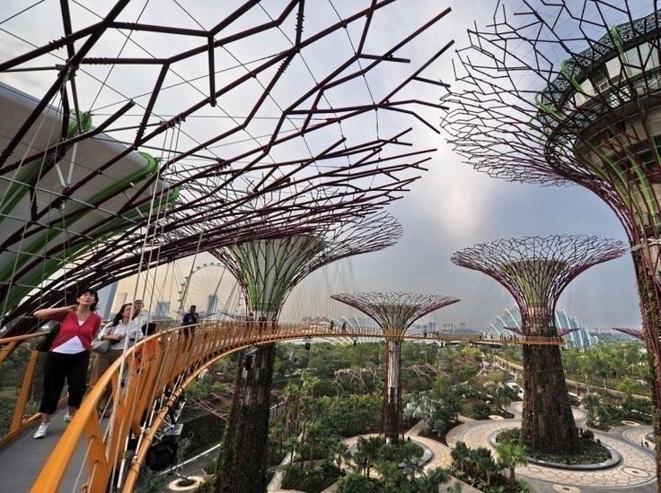Galerie - 24 heures en images - Inauguration des Gardens by the Bay à Singapour le 28 juin 2012