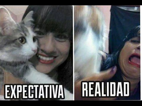 expectativa versus realidad parte II... BUENISIMO¡¡