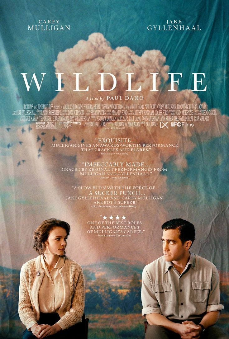 Download reported: Wildlife: Wildlife 2018 1080p WEB-DL H264