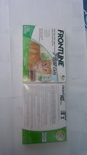 Flea and Tick Remedies 20738: Frontline Plus For Cats *Merial* *Brand New In Box**6 Month Supply!* -> BUY IT NOW ONLY: $40.99 on eBay!