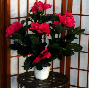 Brighten up any room with this Artificial Rhododendron Bush! Great for placing in niches, end tables; bookshelves, or even the en suite. Makes for a wonderful centerpiece either for indoors or outdoors. Comes potted in a decorative container filled with real moss.  Color Red