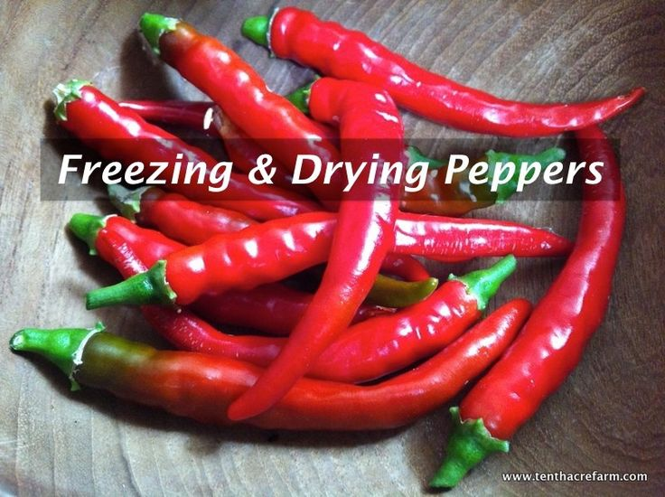 When the harvest is coming in or when you get a good deal at the farmers' market, here's the skinny on freezing and drying sweet bell peppers and hot peppers in bulk for later use.