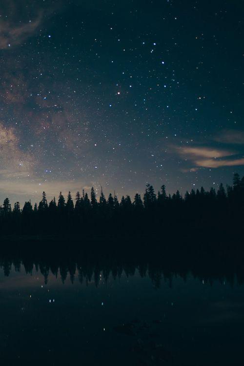 Lake Eiler Stars  by Trevor Gavin
