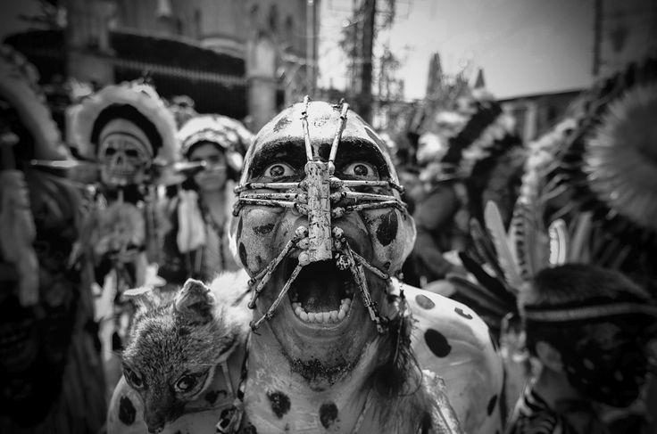Fotografía: Emmanuel Ceballos   4º trimestre