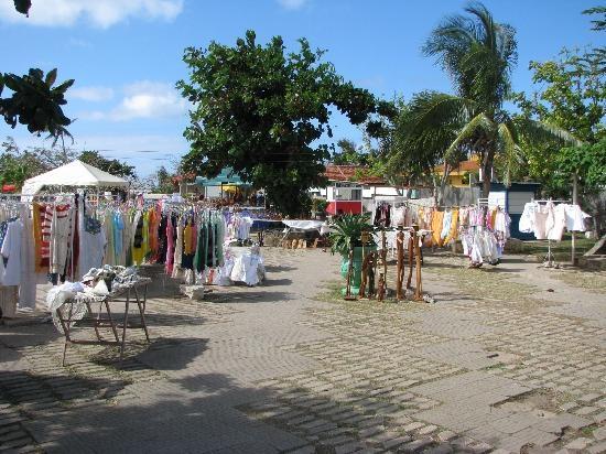 Guardalavaca flet market
