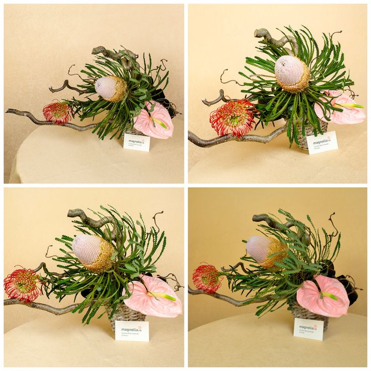 Aranjament extravagant cu #flori exotice: Banksia, Anthurium, Leucospermum, Coryllus