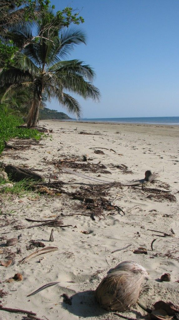 Top tips for exploring North Queensland with kids