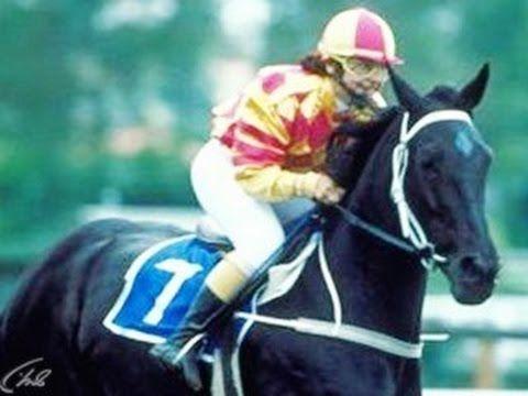 Фильмы о лошадях.  К старту готов (2000)