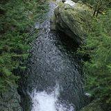Twin Falls Trail - Washington | AllTrails.com