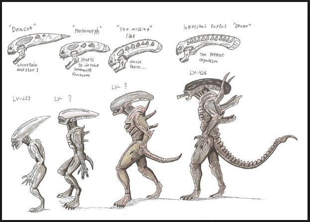 25 great ideas about xenomorph types on pinterest for Prometheus xenomorph mural