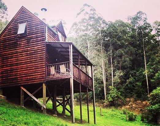 The Tops #Organic #Retreat, #Barrington Tops #Rainforest, #Australia.