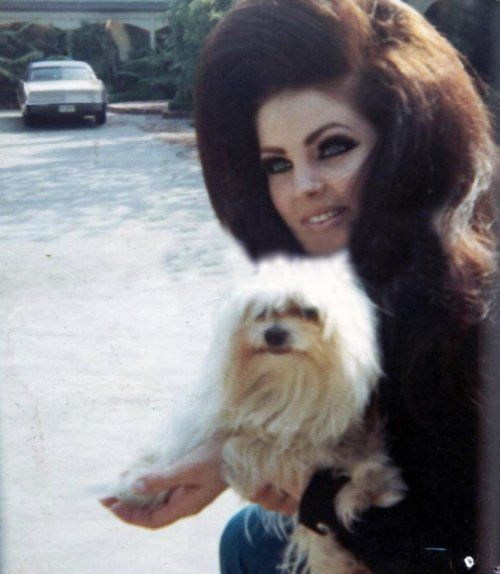 Priscilla Presley, love her huge hair & bold eyelashes she sported in the 60's.