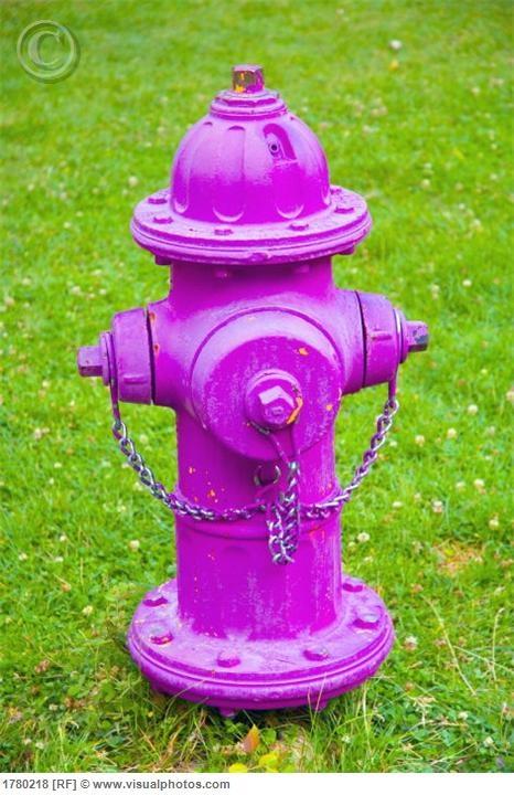 PINK fire hydrant, or a make-shift sprinkler. (depends on ...
