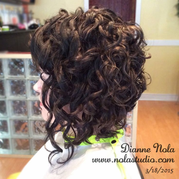 Best Haircut For Curly Hair In San Francisco : Ideas about curly inverted bob on bobs