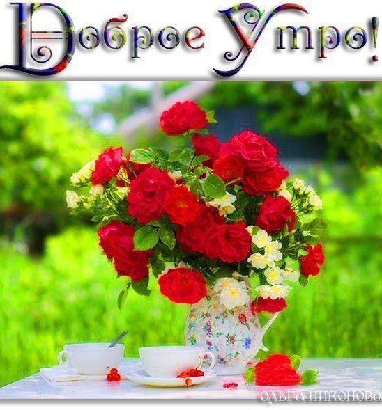 картинки большие цветы с добрым утром да