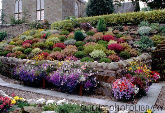 Scottish cottage heather garden.