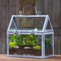 34 best mini greenhouse images on pinterest terrariums mini greenhouse and terrarium. Black Bedroom Furniture Sets. Home Design Ideas
