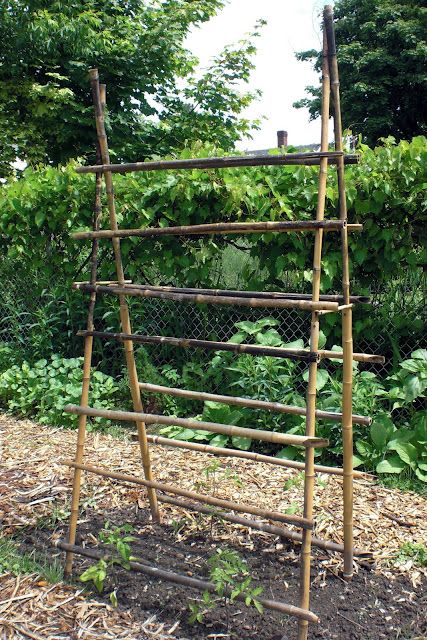 Homemade gardening trellis. Twigs, sticks, and not much else.