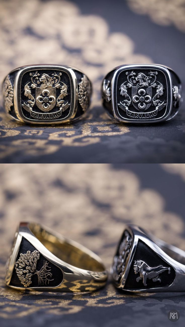 194 best Rings images on Pinterest Rings Men rings and Jewerly