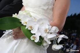 Αποτέλεσμα εικόνας για ανθοδεσμες γαμου