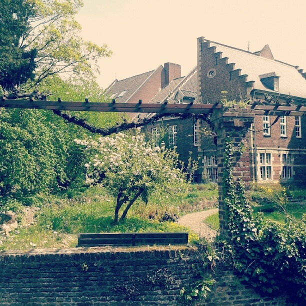 #maastricht #mtricht #univercity #natuurhistorischmuseum #garden