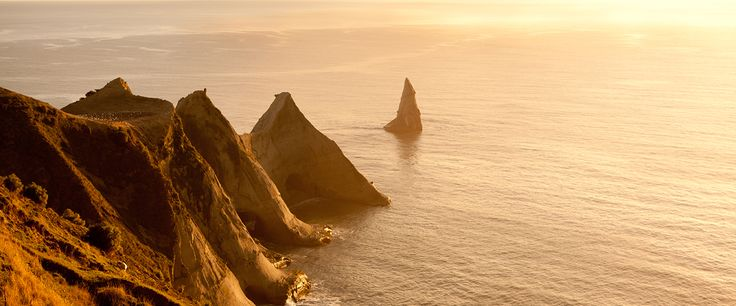Cape Kidnappers, Hawke's Bay Tourism
