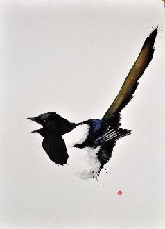 Magpie #1 - Karl Mårtens - watercolor