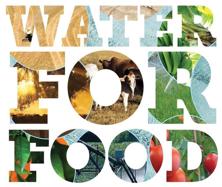 #WaterForFood - Background reading for today's community forum http://www.water.wa.gov.au/PublicationStore/first/107580.pdf… @ShaneLove_Moore @MiaDaviesMLA