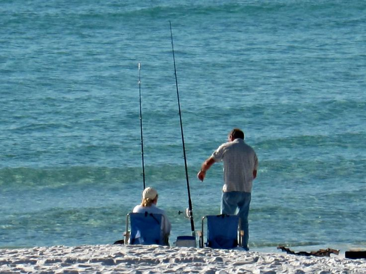 52 best images about something fishy on pinterest for Surf fishing destin fl