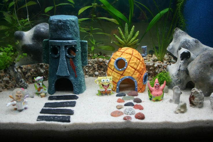 Spongebob decor idea for our fish tank lol personally I don't like the show but this would b a neat idea to do for Austin's fish tank