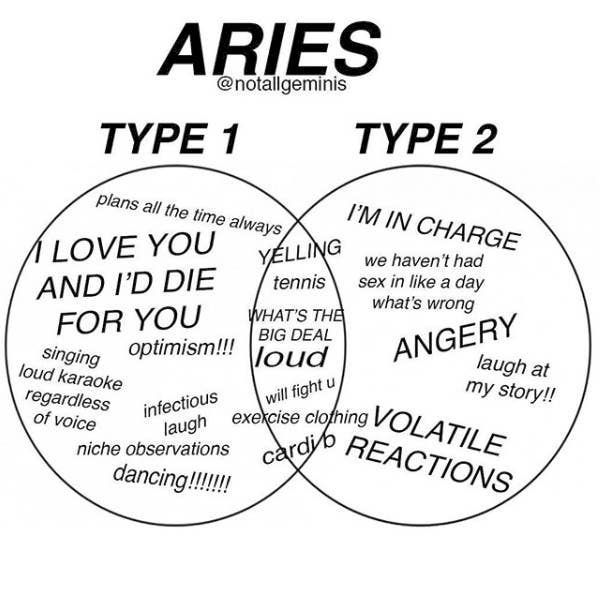 25 #aries Memes That Aren't Just About Them Yelling Their Heads Off