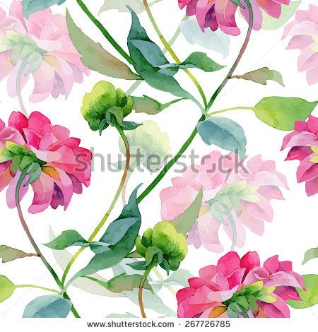 Floral pattern. Vector seamless background. Pink dahlias
